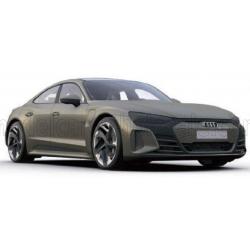 1/18 - AUDI - GT RS E-TRON 2021 - OLIVE MET